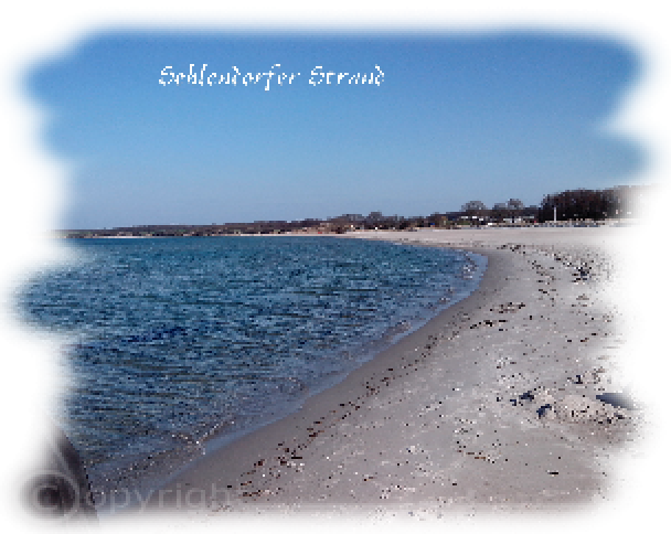gallery/images-Sehlendorfer-Strand-2015